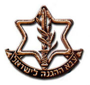 Tzayad: IDF's Version of Waze