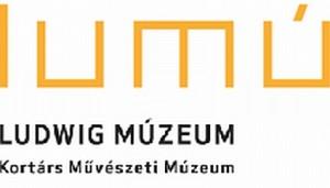 Fabényi Júlia lesz a Ludwig Múzeum igazgatója