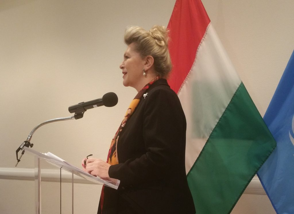 Bogyai Katalin Nagykövet, az állandó magyar ENSZ képviselet vezetője, öt beszélgetőpartnert hívott meg, hogy mondják el véleményüket 1956 nemzetközi megítéléséről, illetve arról a demokratizálódási folyamatról, amely a huszadik században kezdődött el számos közép - kelet - európai országban, így Magyarországon is.